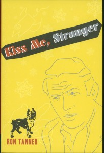 Kiss Me, Stranger, an illustrated novel
